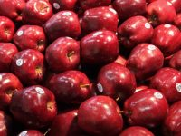 Apples Expects