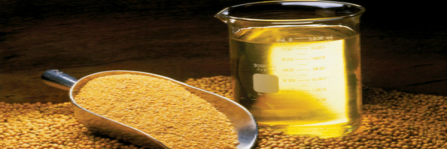 Oilmeal exports
