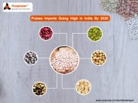 Pulses Imports going high in India by 2020