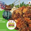 Palm-oil-restricted-to-import-from-Malaysia-in-India